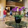 ペナン一日目はボロボロ・・・高層ホテル、相性は悪いようで