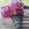 ピアノ教室のオンライン発表会