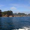 《11.3.11》2016夏の巡礼-9日目-田野畑村②/ 「北山崎断崖クルーズ」の船に乗る