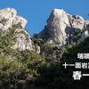 【瑞牆山】十一面岩正面壁『春一番』