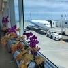 ANA307便 名古屋から那覇(沖縄) 搭乗2日前にプレミアムクラスに事前アップグレード! アップグレード方法・機内食とドリンクメニューも紹介