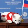 ワールドカップ初戦の対サウジ戦は、ロシア勝利と予言猫