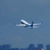 2021年上半期 マイル消費状況(ANA、JAL、UA、デルタ)