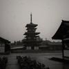 大雨の中の薬師寺東塔