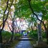 【大阪】紅葉の隠れた名所 空海ゆかりの延命寺(河内長野市・御朱印)