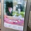17.04.02 藤原さくら シングル『Someday / 春の歌』リリース記念ミニライブ@あべのキューズモール 3Fスカイコート