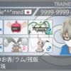 【剣盾 シングルS5 使用構築】対面インテホルミミ【最終日最高46位/最終133位】