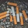家の前のタバコの吸殻について