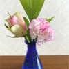 ・隔週で届くお花の定期便今回のお花は、コレ♪・お花を飾ると、元気になれますね・...