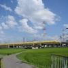 通達234 「 黄色い新幹線と桃のチキ返空 」