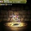 【パズドラ】神門の狛犬姫センリの希石の入手方法やスキル上げ、使い道や素材情報!