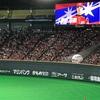 札幌ドーム 斎藤佑樹投手