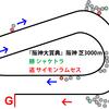 【阪神大賞典・2019年】悔いの残らないレースを!サイモンラムセス|逃げ馬レース結果