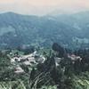 毎日更新 1984年 バックトゥザ 昭和59年8月2日 日本一周 バイク旅  23歳  ホンダCL400 タイムスリップブログ シンクロ 終活