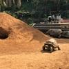 【ヘビヘビワニワニ】爬虫類体感型動物園「iZoo(イズ―)」に行く【カメカメカメカメ】