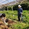 第1回 畑遊びde自然体ワークショップ 開催報告 〜穏やかな時間の中で〜