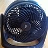 サーキュレーター(扇風機)の風に当たり過ぎたら、風邪を引いた模様。