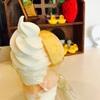 【北区】一実庵。桃が丸ごと一個!贅沢なフルーツソフトクリーム。