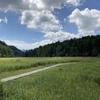 【 自然を求めて 】 原チャリで徳島県三好市『黒沢湿原』を訪れてみた!