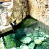【温泉】木賊温泉。1000年前から湧き出る秘湯 岩風呂。南会津舘岩方面を旅しよう。