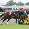 東京競馬11R 青葉賞(GII) ワンダフルタウン 和田竜二騎手
