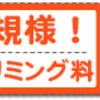 ペットホテルわんわん柏 朝夕のお散歩(わんわん柏)