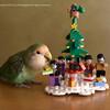 「インコのおとちゃん&」の音楽とクリスマス