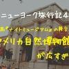 【ニューヨーク旅行記4】映画『ナイトミュージアム』の舞台、アメリカ自然博物館が広すぎる!
