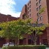 森のスパリゾート北海道ホテル(帯広)で温泉おこもりステイとカウンター天ぷらデビューの贅沢三昧。