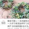多肉植物 伊丹 イベント ワークショップ