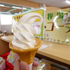 高千穂牧場のソフトクリームだけは@宮崎県都城市