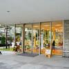 [街]東京・秦野『葉っぱスキャンワールド』展のレポート