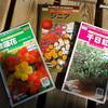 花のタネ 春蒔き