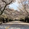 大岡山 2021春