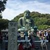 鎌倉の大仏と紫陽花の長谷寺に行ってきました