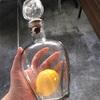 不思議レモン瓶