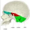 頭蓋底骨折の所見と症状