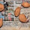 サツマイモの栽培記録 その9