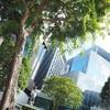【SFC修行】シンガポール編①:自然豊かな都会オーチャードでお買い物