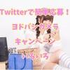 【Twitter】ヨドバシカメラ公式のフォロー&リツイートでいろいろ当たるキャンペーン情報!