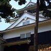 岡崎城と三ヶ根山の紫陽花