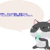 猫のご飯と給水。冬は、飲み水もご飯も少し温めてみる。