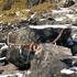 1300年以上の歴史!『那須温泉神社~殺生石』を歩いてきた