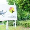 虫、虫、虫!!!虫だらけ【閲覧注意】昆虫の生態展示が楽しめる 竜洋昆虫自然観察公園【東海ドライブ】