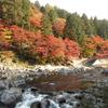 【香嵐渓・小原の四季桜】日帰りツアーで東海地方の紅葉名所堪能してきた