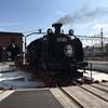 真岡鐡道のSLを東武鉄道が落札したそうですが、SLって儲かる商売なのでしょうか