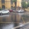 9月6日 雨です