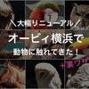 リニューアルしたオービィ横浜で動物に触れてきた!+裏ワザ