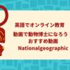 オーストラリアのロックダウン中のオンライン教育~おすすめ動画①~動物の生態を英語の動画で学ぼう!National Geographic