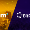 提携発表|NEM.io財団ニュージーランドがBitPrimeと提携しました。
